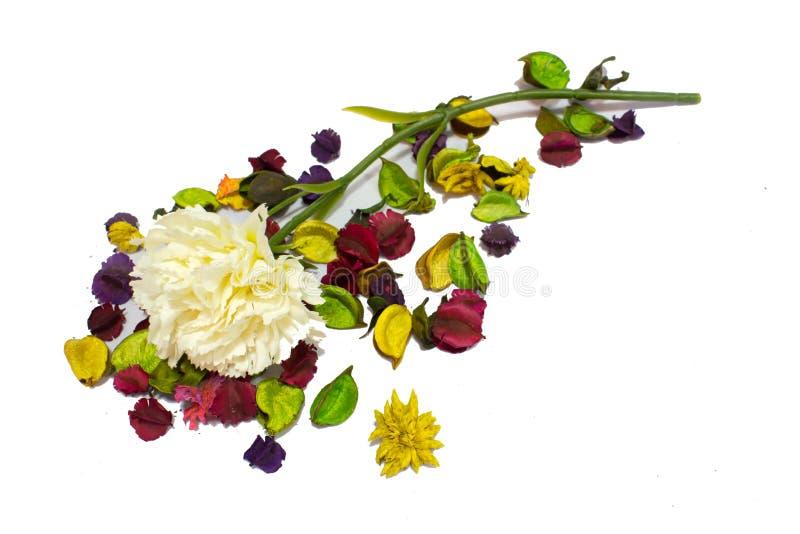 Flores falsas en fondo fotografía de archivo libre de regalías
