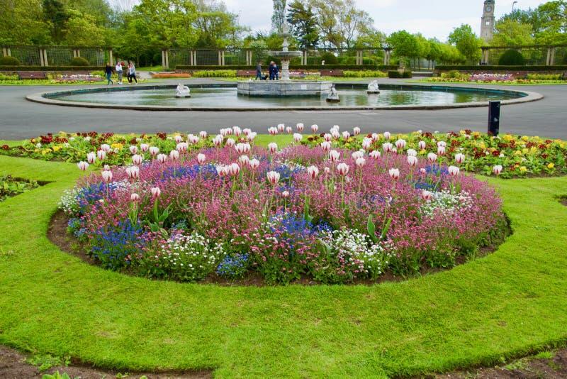 Flores fonte e povos foto de stock royalty free