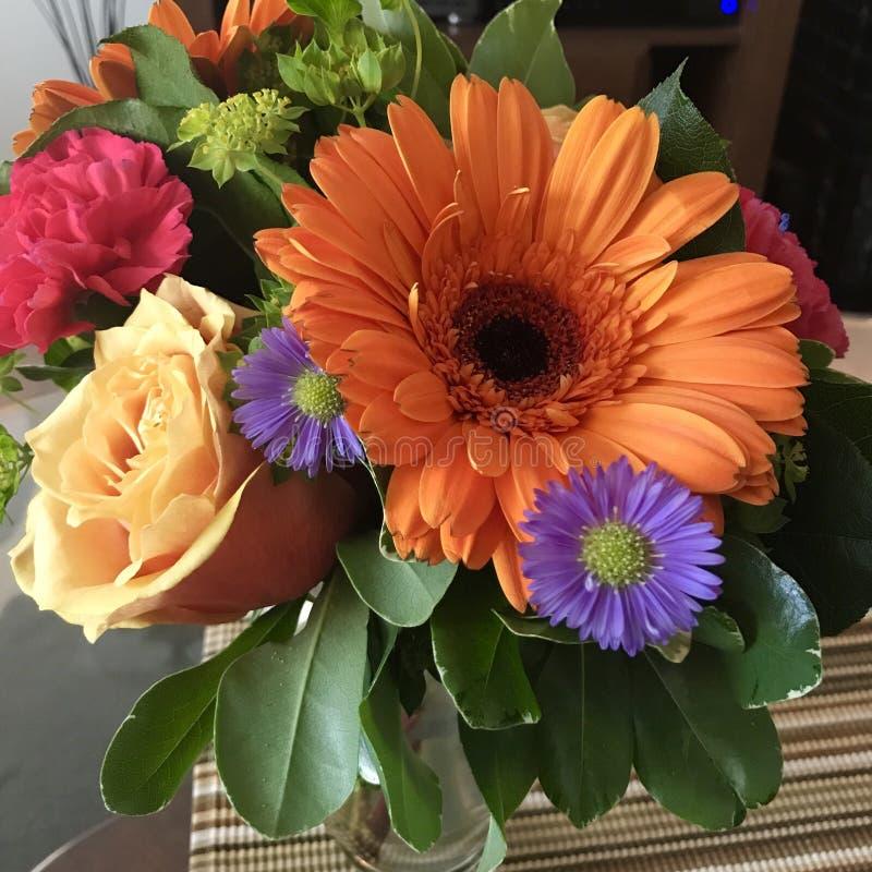 Flores frescas fotografia de stock royalty free