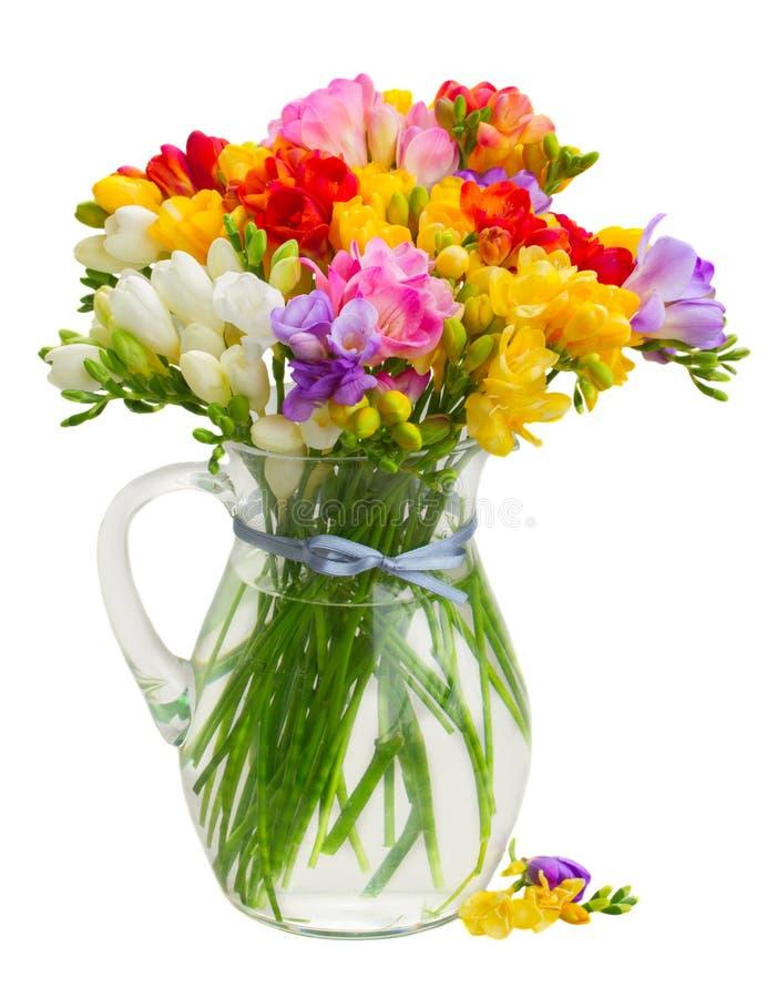 Flores frescas de la fresia imagen de archivo
