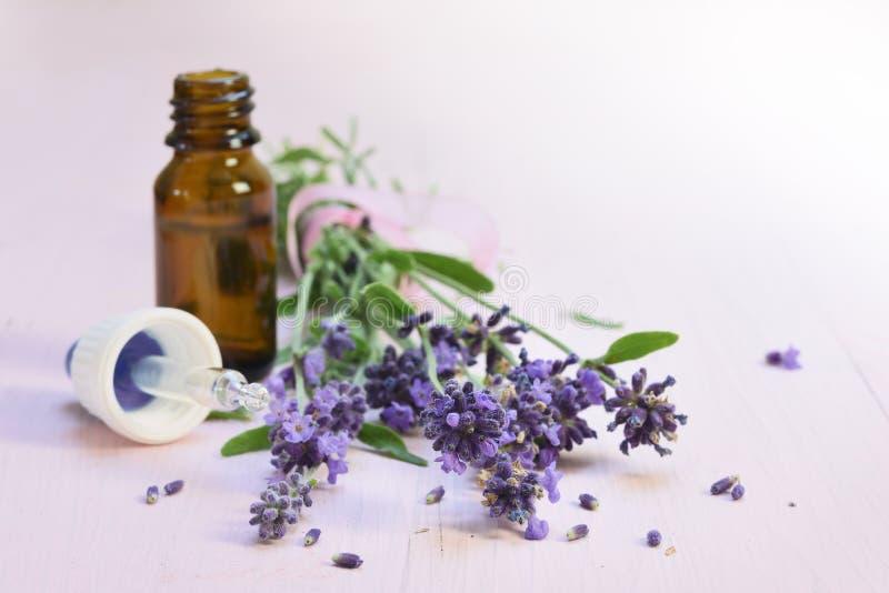 Flores frescas de la lavanda y aceite herbario esencial en un bottl de cristal fotos de archivo