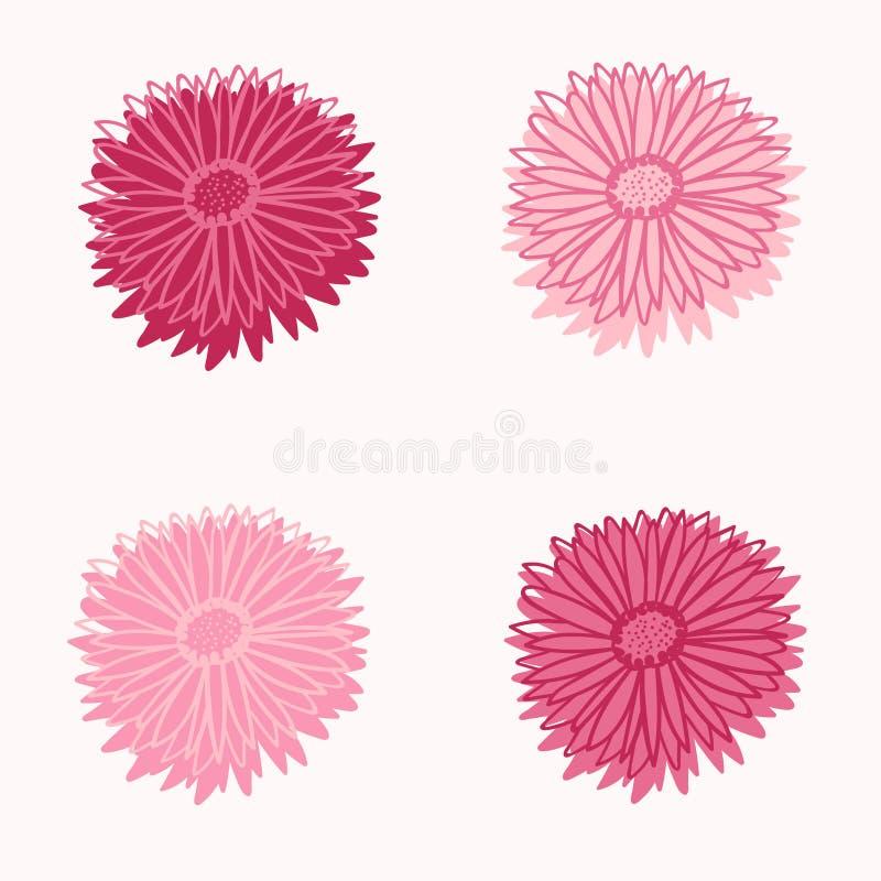 Flores frescas do áster da mola cor-de-rosa quatro ilustração stock