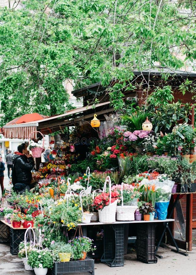 Flores frescas para la venta fotos de archivo libres de regalías