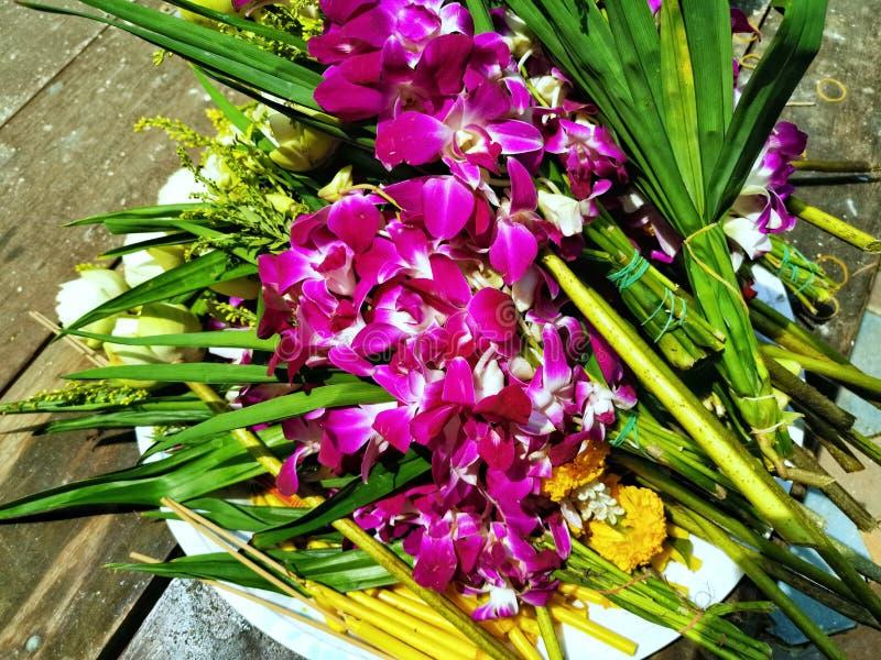 Flores frescas para os budistas que adoram a Buda fotos de stock