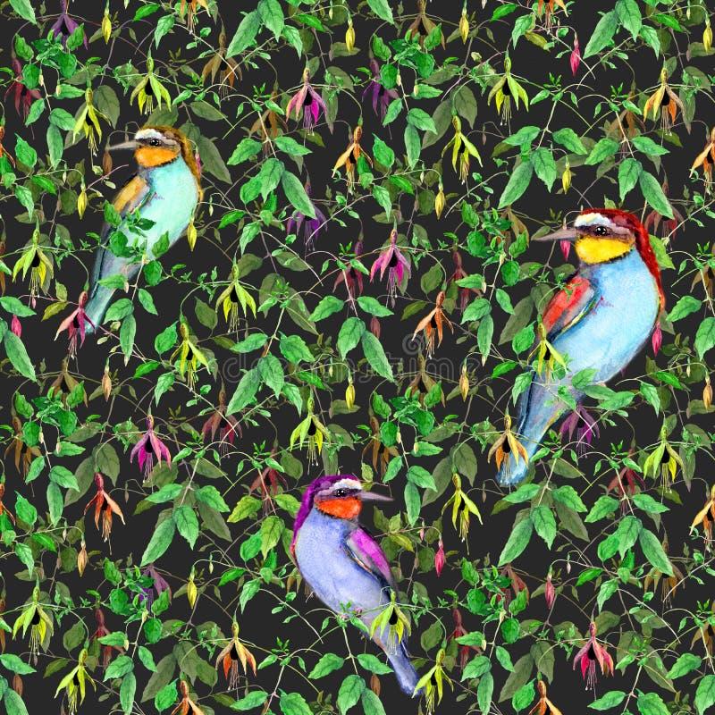 Flores fucsias exóticas y pájaros tropicales en fondo negro Modelo floral inconsútil watercolor ilustración del vector