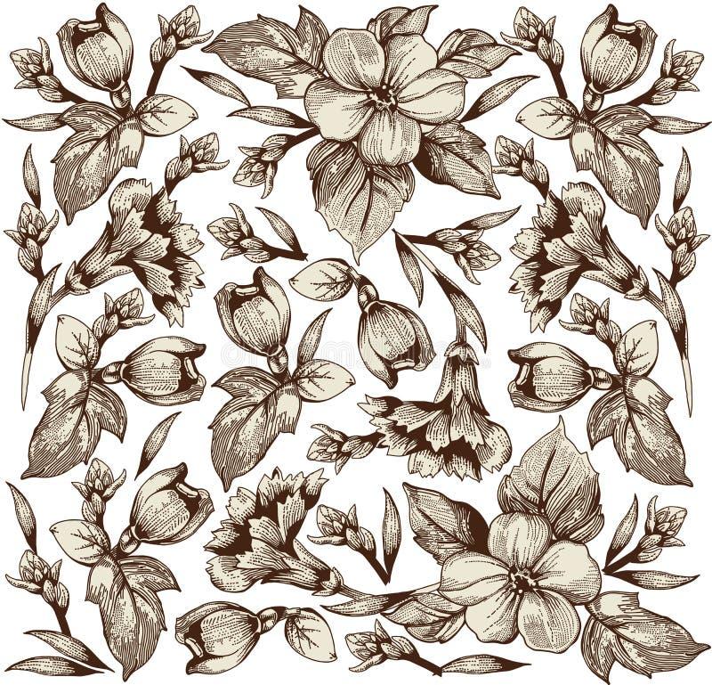 Flores. Fundo bonito com flores. ilustração do vetor