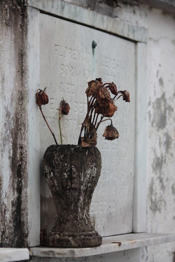 Flores graves imagens de stock