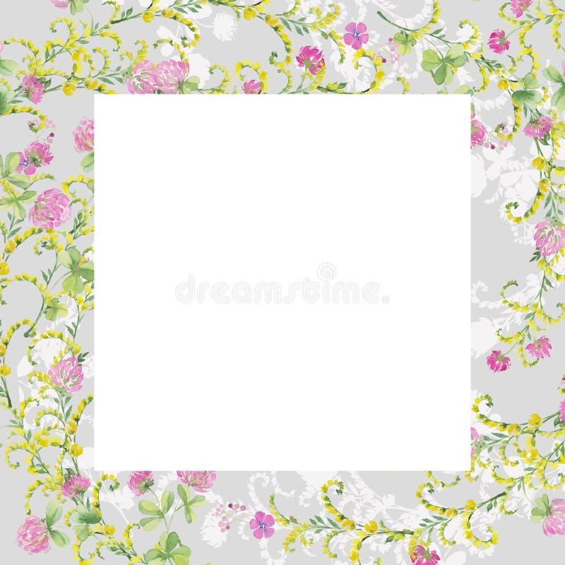 Flores grises de la acuarela del marco del trébol rosado y de la arveja amarilla Dibujo de la mano para las tarjetas, invitacione foto de archivo libre de regalías