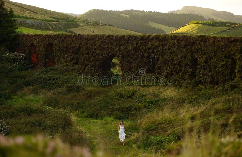 Flores groen landschap, de Azoren, Portugal stock foto