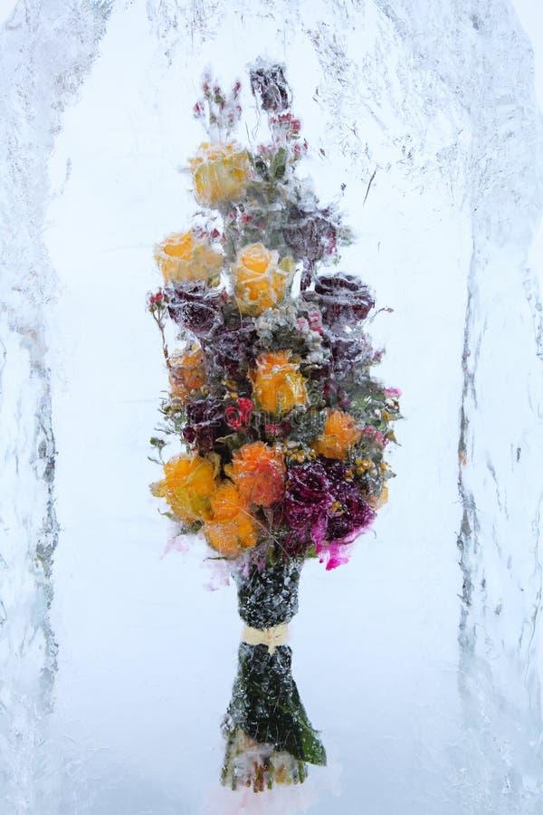 Flores hermosas congeladas con las rosas amarillas imagenes de archivo
