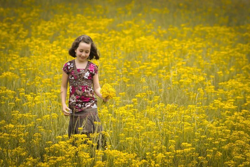 Flores hermosas de la cosecha de la chica joven en un campo imagen de archivo libre de regalías