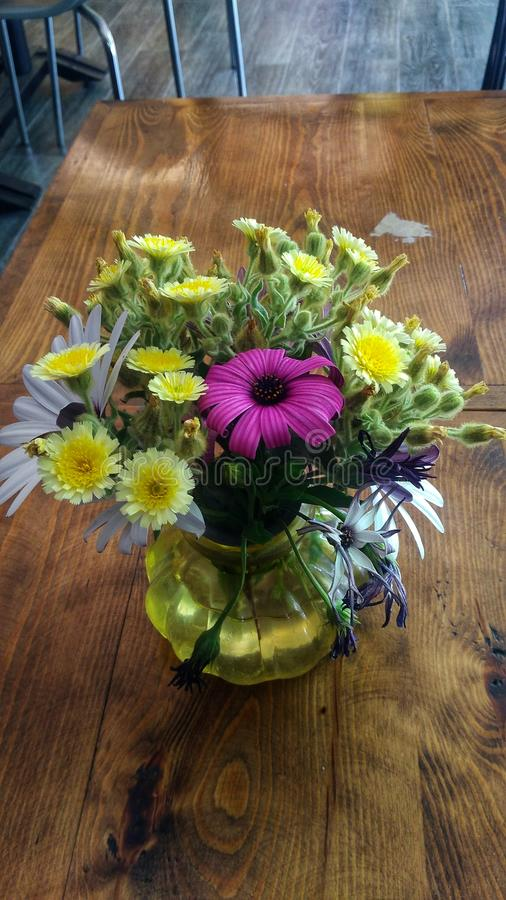 Flores hermosas de la primavera fotografía de archivo libre de regalías