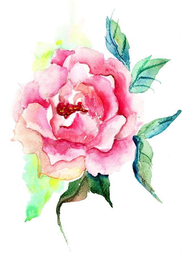Flores hermosas de las rosas ilustración del vector
