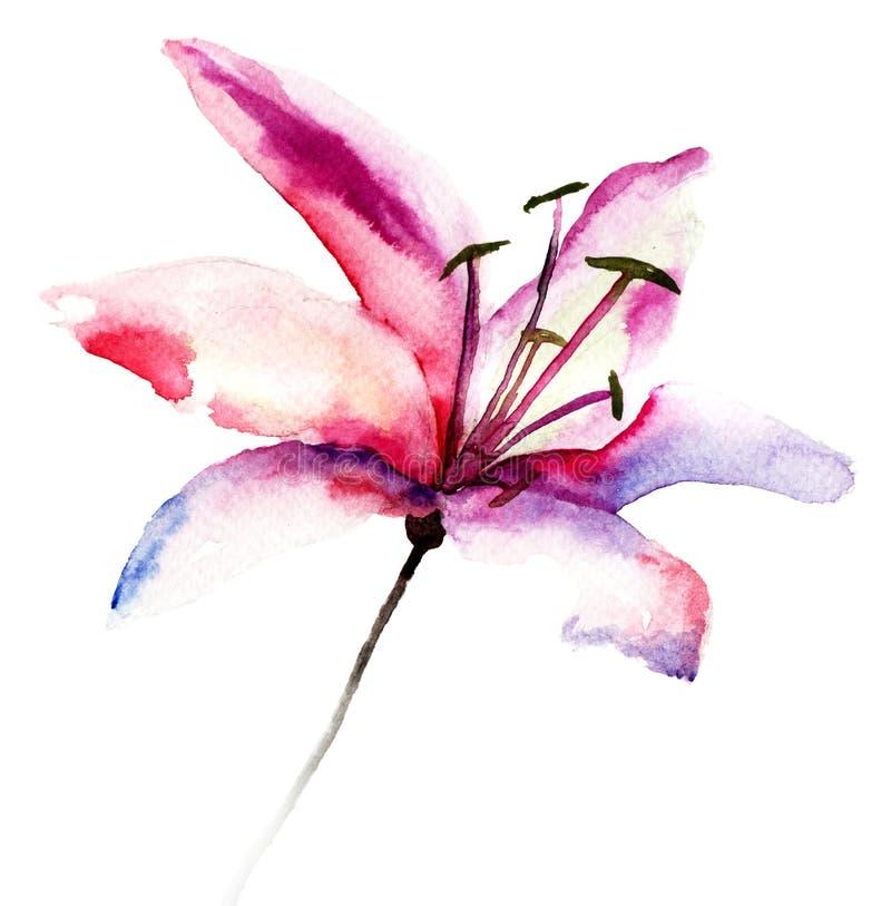 Flores hermosas del lirio libre illustration