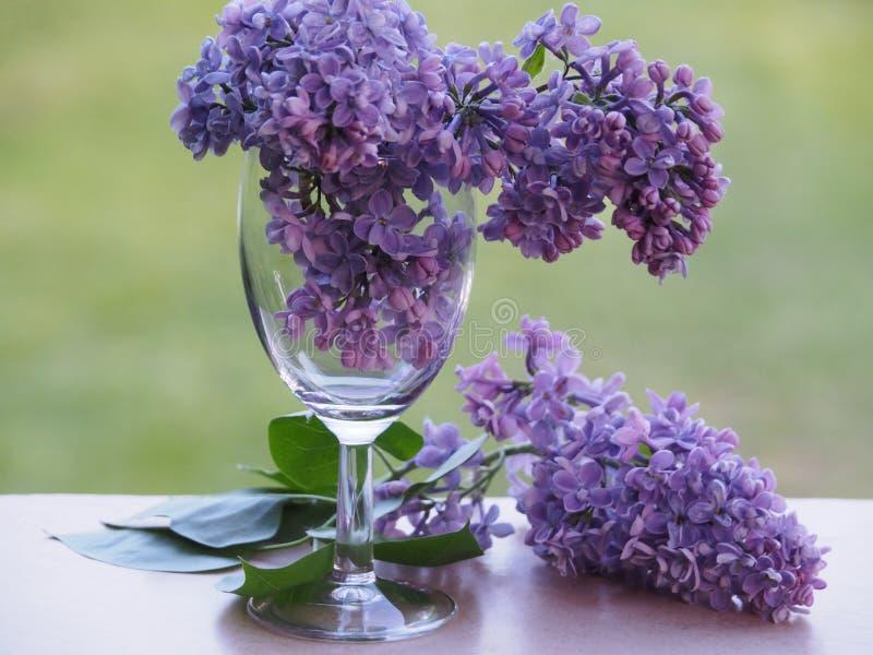 Flores hermosas en una copa de vino transparente imagen de archivo