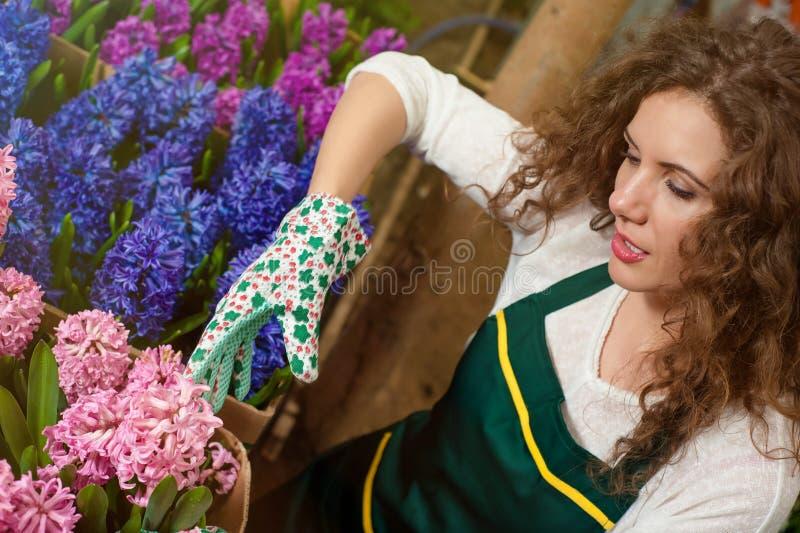 Flores hermosas listas para el mercado fotografía de archivo
