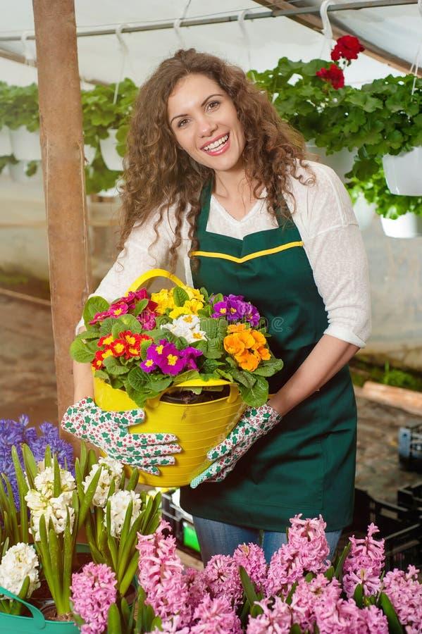 Flores hermosas listas para el mercado imagen de archivo libre de regalías