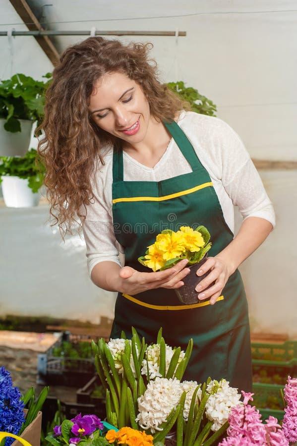 Flores hermosas listas para el mercado imagen de archivo