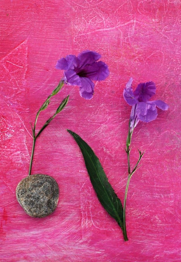 Flores, hoja, piedra. imagen de archivo libre de regalías