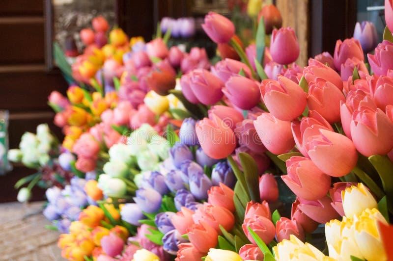 Flores holandesas imagens de stock