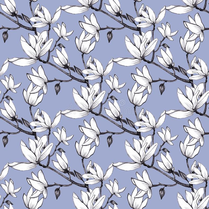 Flores inconsútiles de la magnolia del modelo exhausto de la mano en fondo azul stock de ilustración