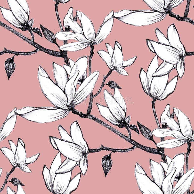 Flores inconsútiles de la magnolia del modelo exhausto de la mano en fondo rosado libre illustration