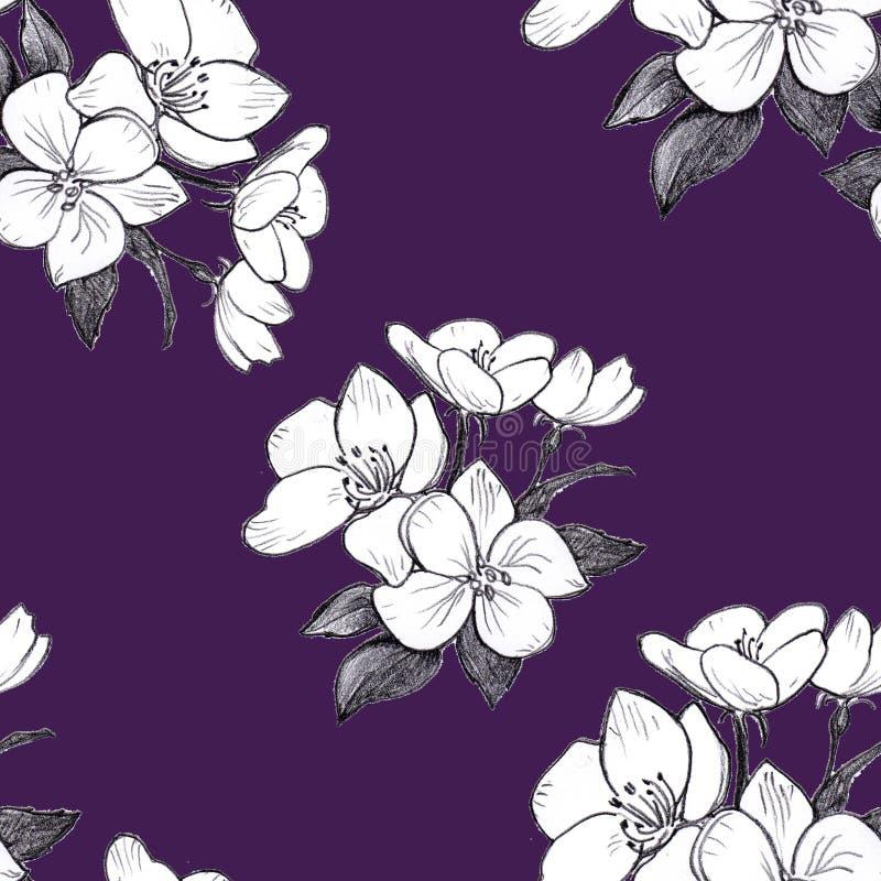 Flores inconsútiles de la manzana del modelo exhausto de la mano en el fondo violeta stock de ilustración