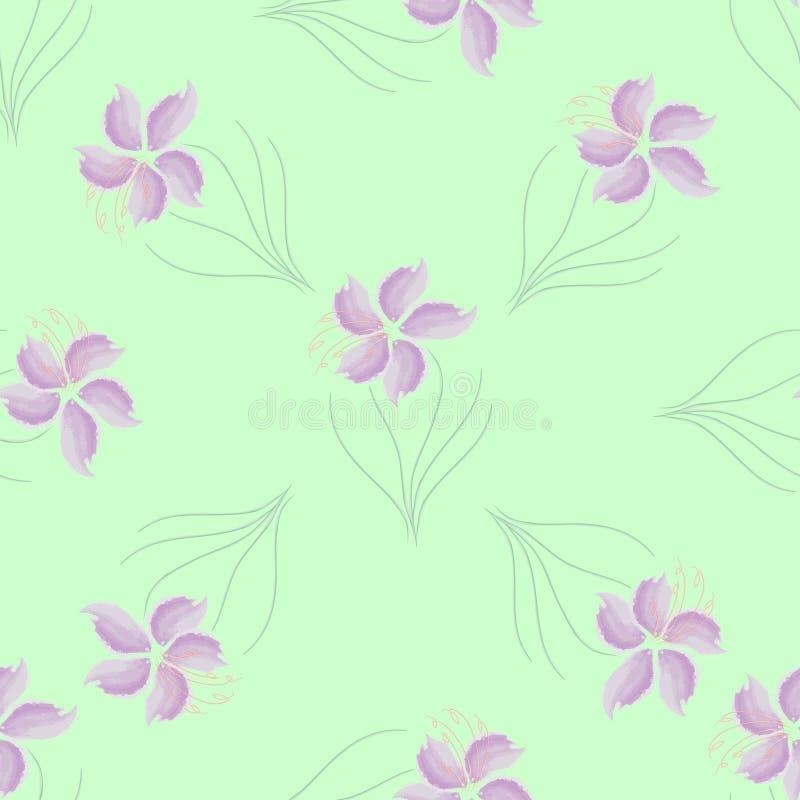 Flores inconsútiles de la púrpura del modelo de la textura fotos de archivo libres de regalías