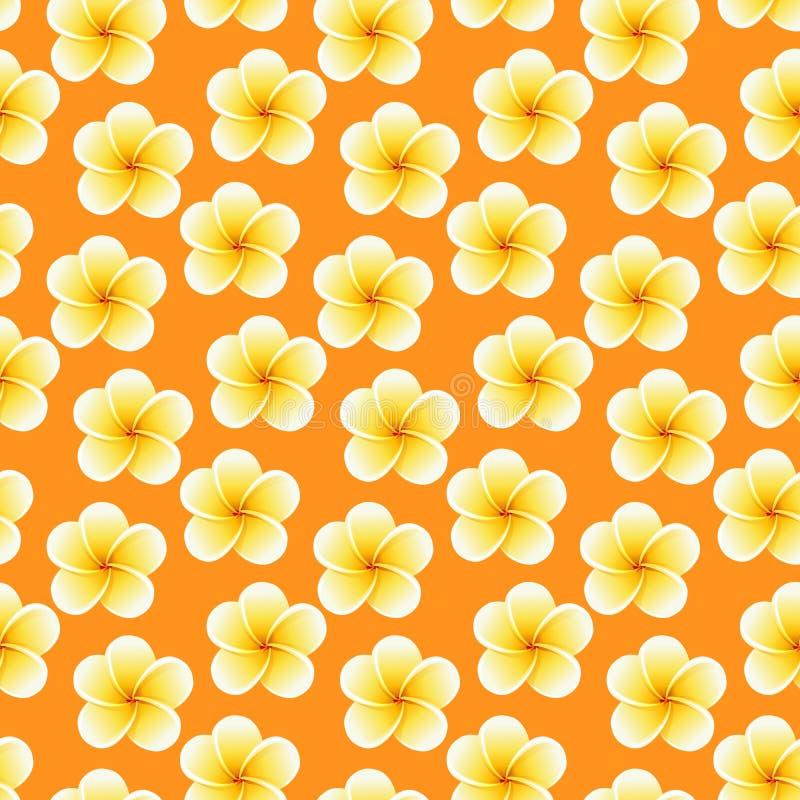 Flores incons?tiles del Plumeria Fondo tropical hermoso del modelo de la tela de la selva foto de archivo libre de regalías