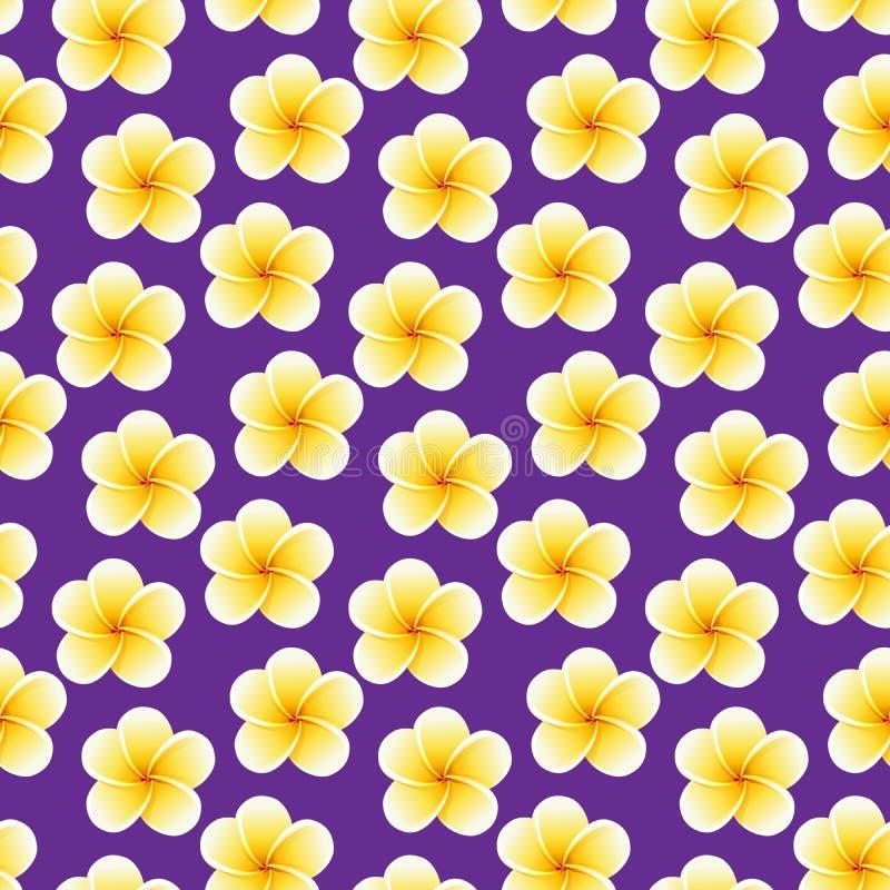 Flores incons?tiles del Plumeria Fondo tropical hermoso del modelo de la tela de la selva foto de archivo