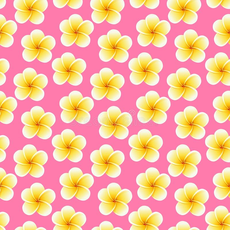 Flores incons?tiles del Plumeria Fondo tropical hermoso del modelo de la tela de la selva fotos de archivo libres de regalías