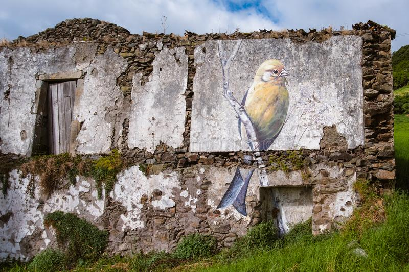 Street art in Flores - Azores Island stock photo
