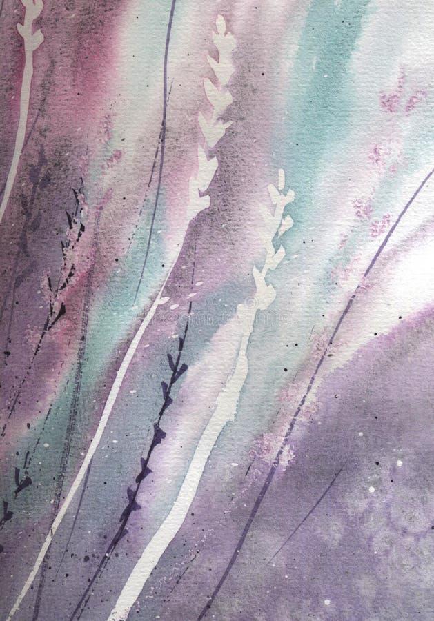 Flores lavender ilustração aquarela sobre fundo branco Desenho botânico da erva lilás, para medicina e aroma imagens de stock