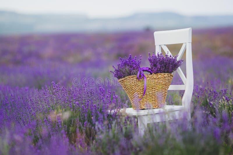 Flores lilás da alfazema em uma cesta de vime foto de stock royalty free