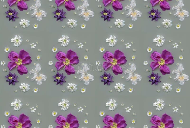 Flores lilás e brancas do teste padrão - da mola ilustração royalty free