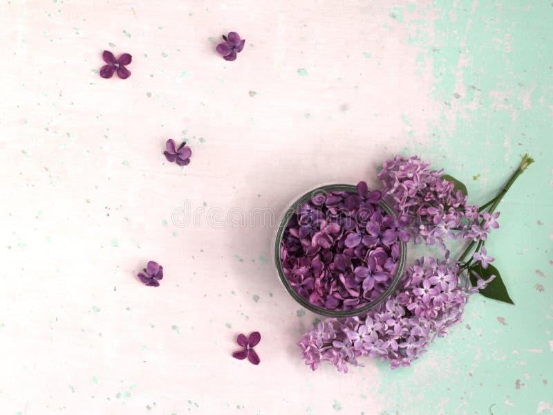 Flores lilás em um prato de vidro imagem de stock