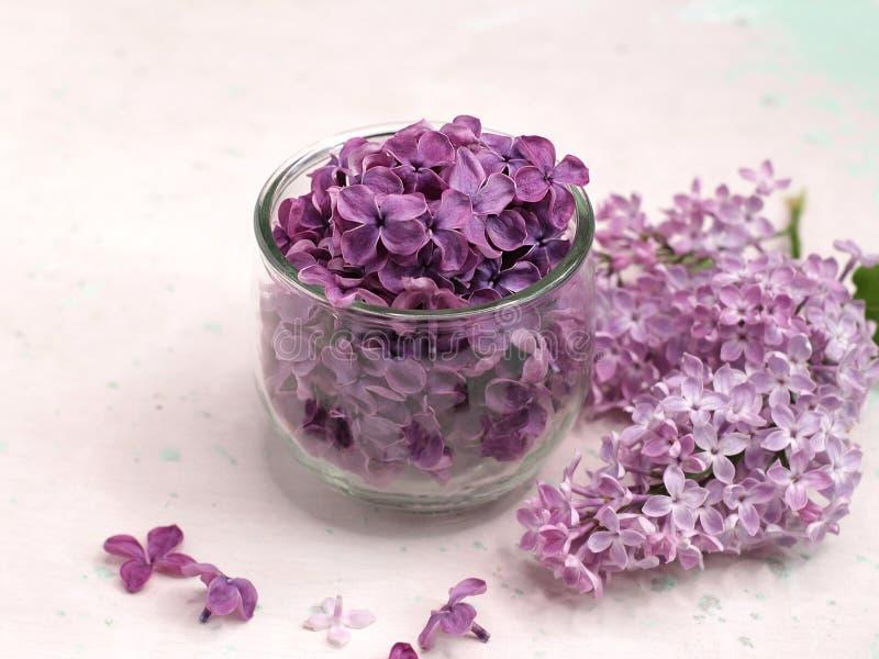 Flores lil?s em um prato de vidro fotografia de stock royalty free