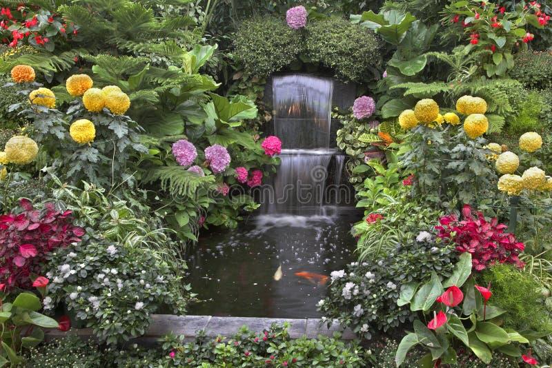Flores magníficas. imagens de stock