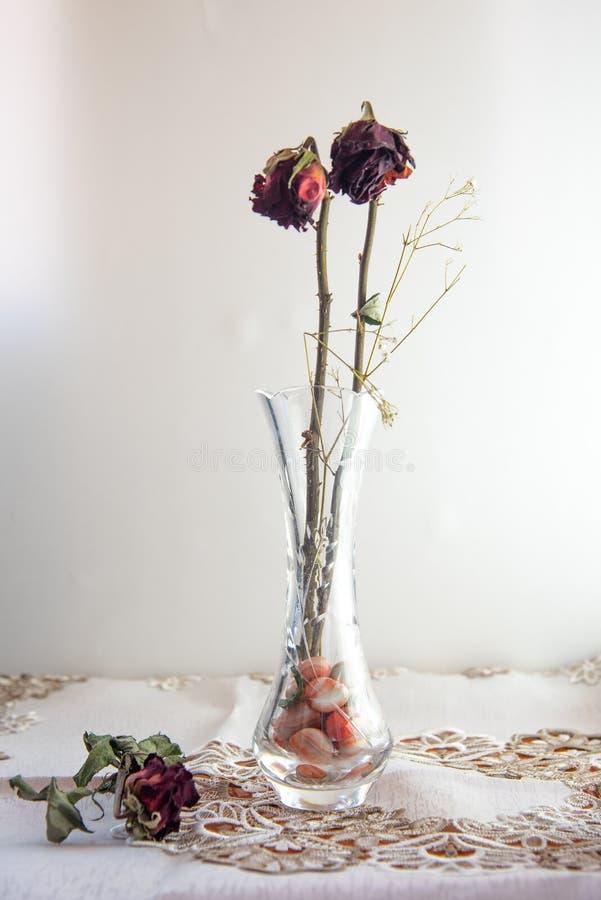 Flores marchitadas de la rosa del rojo en el florero fotos de archivo