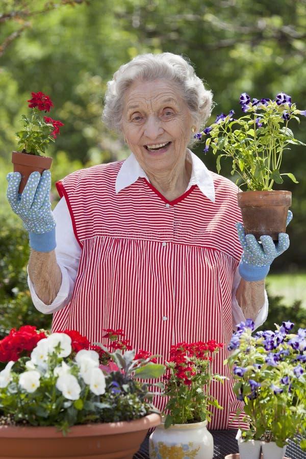Flores mayores sonrientes de la explotación agrícola de la mujer imagenes de archivo