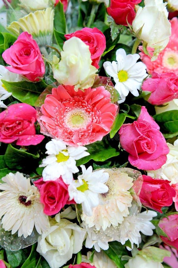 Flores mezcladas imágenes de archivo libres de regalías
