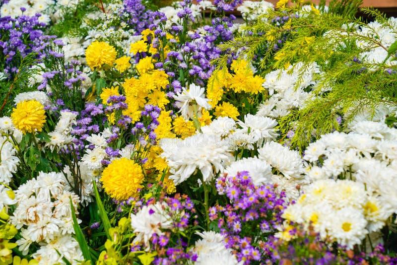 Flores mezcladas; cosmos amarillo, orquídea blanca, maravilla que se arreglará en una zona , Tailandia imagenes de archivo