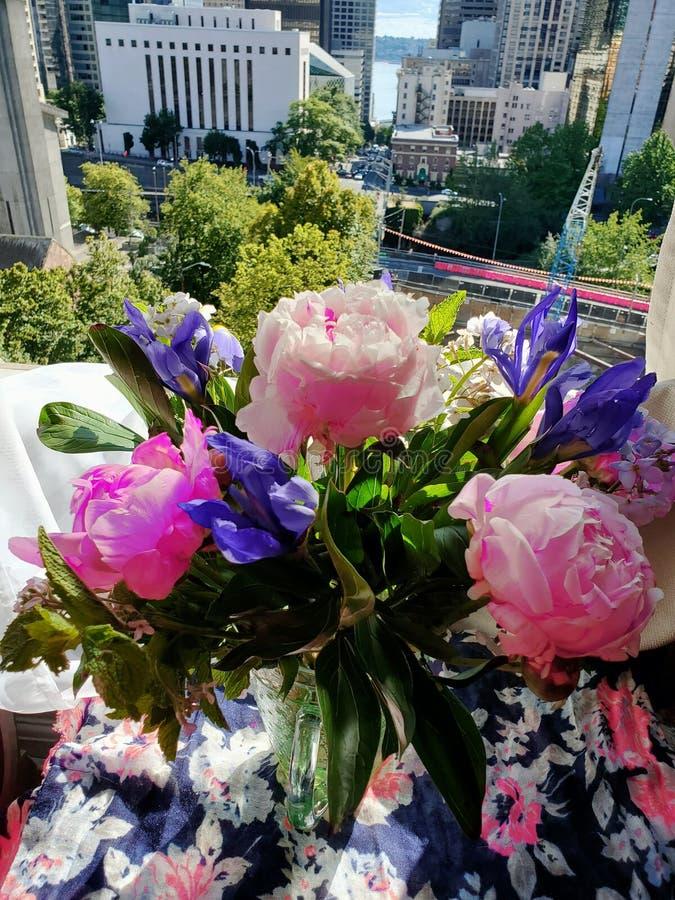 Flores na elevação da janela acima fotografia de stock royalty free