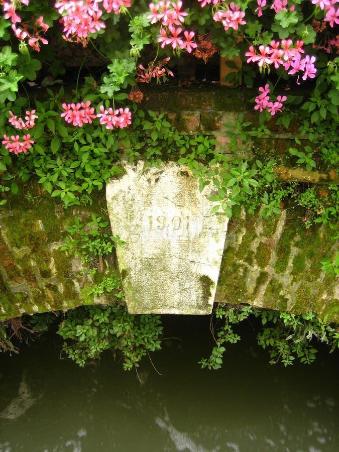 Flores na ponte velha 3 imagem de stock royalty free