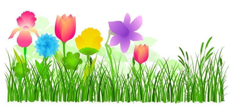 Flores no vetor da grama ilustração stock