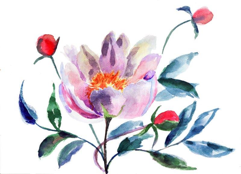 Flores originais do Peony ilustração royalty free