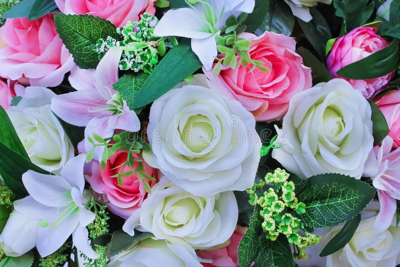 Flores ornamentales coloridas que florecen, extracto multicolor artificial hermoso de la textura natural para el fondo fotografía de archivo libre de regalías