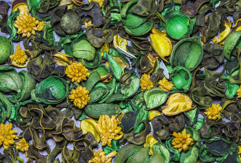 Flores ornamentales secas, frutas, plantas clasificado Fondo fotos de archivo