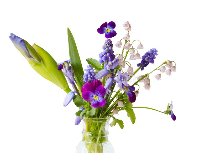 Flores púrpuras imágenes de archivo libres de regalías