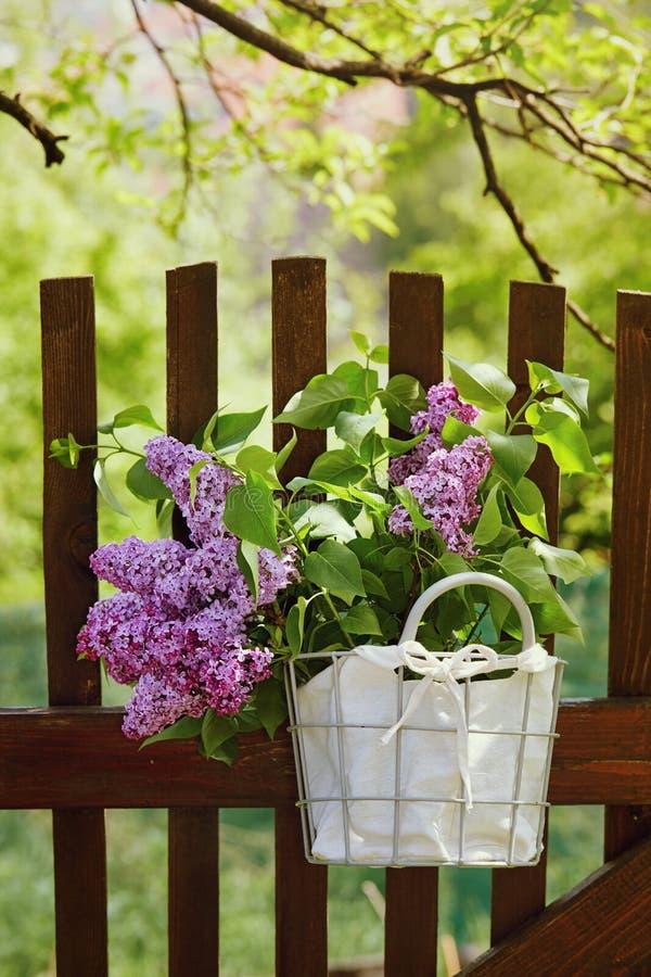 Flores púrpuras de la lila fotografía de archivo libre de regalías